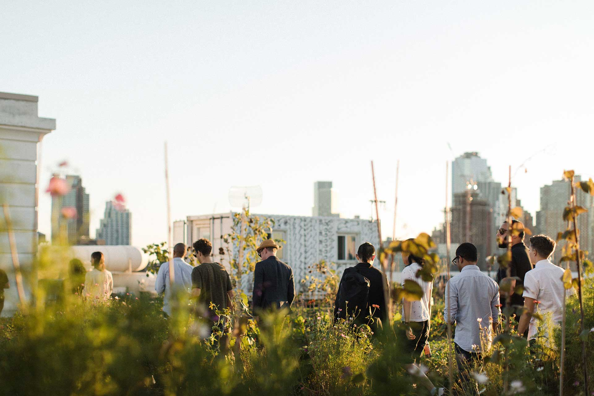 A group of people walk through a rooftop garden.